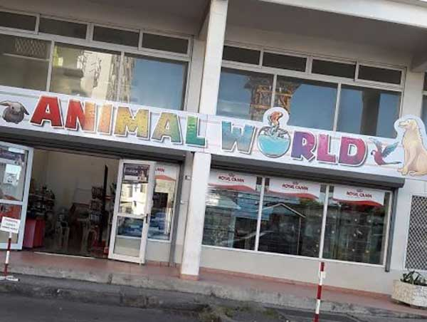 animal-world-1.jpg